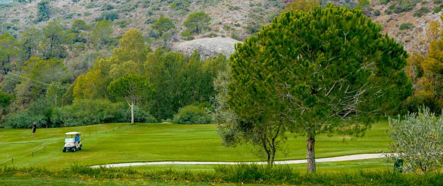 C4_BOTANIC_GOLF_BENAHAVIS_18_10_16_45213